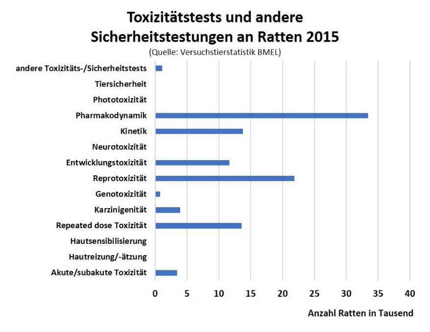 Attractive Ratte Anatomie Arbeitsblatt Composition - Mathe ...